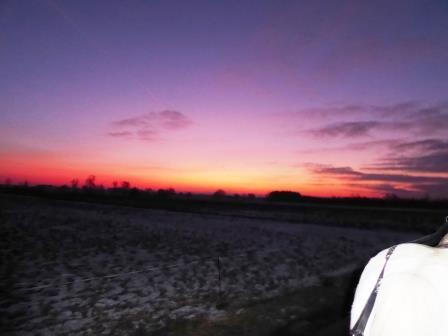 zachód ślończ na Mazowszu (2)