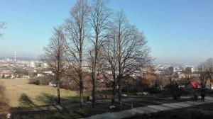 2018-11-07 Kielce - Karczówka widok na Kielce (2)