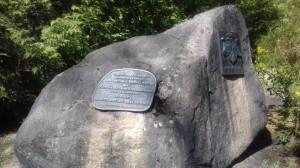 Arboretrum w Konopnej Gorze